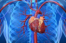 """دراسة تؤكد : القلب قادر على """"شم الروائح """""""