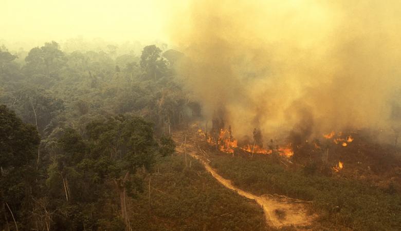 مئات الحرائق الجديدة تشتعل في غابات الأمازون