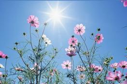 حالة الطقس: ارتفاع على درجات الحرارة حتى الخميس
