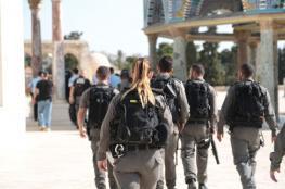الاحتلال يحول محيط الأقصى والبلدة القديمة في القدس الى ثكنة عسكرية