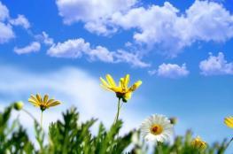 الطقس: أجواء صيفية والحرارة حول معدلها السنوي العام