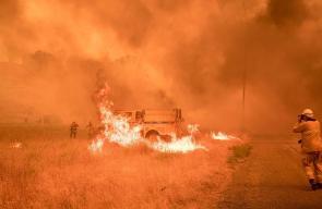 ولاية كاليفورنيا الامريكية تكافح النيران المشتعلة منذ أيام