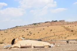 مستوطنون يشنون عمليات سطو على خيام العائلات في الأغوار
