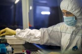 فلسطين تسجل أعلى حصيلة يومية للمتعافين من فيروس كورونا
