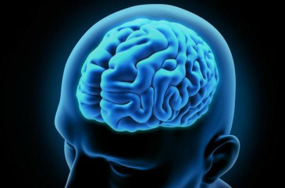 دراسة: الدماغ يأكل نفسه بسبب قلة النوم