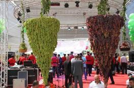 افتتاح مهرجان العنب في حلحول شمال الخليل