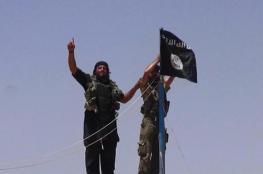 داعش : لم نهزم بعد ولنا وقفة مع نيوزيلندا
