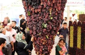 مهرجان العنب الثامن في الخليل