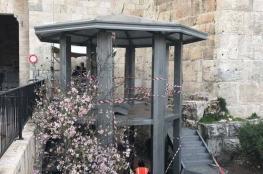 """الاحتلال ينصب برج مراقبة على مدخل """"باب العامود"""" بالقدس"""