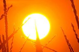 حالة الطقس : درجات الحرارة تواصل ارتفاعاتها