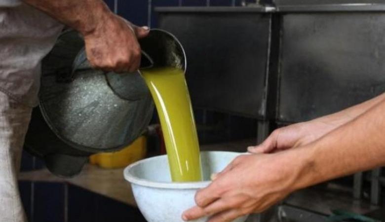 تقرير يكشف أسعار زيت الزيتون في فلسطين هذا العام