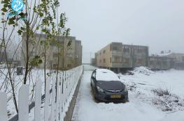 شاهد ..الثلوج تكسو شمال فلسطين وهضبة الجولان