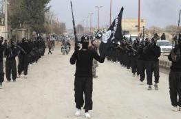 """التحالف الدولي: مقتل أكثر من 20 عنصرا من """"داعش"""" في سوريا"""