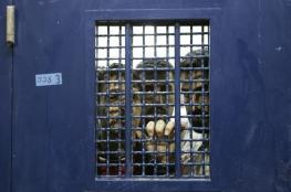 اسرى السجون الصحراوية يتجرعون مرارة الصيف