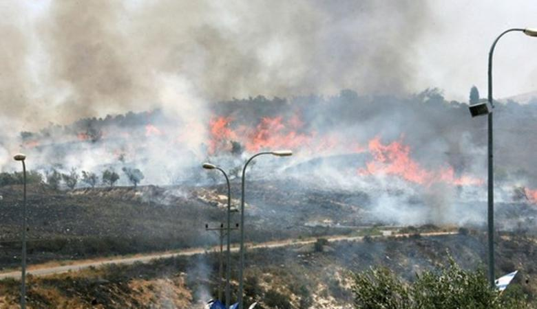 مستوطنون يحرقون 30 دونما من اراضي جنوب الخليل