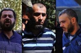 تنفيذ حكم الإعدام بقتلة فقها أمام 1000 شخص بغزة