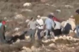 مستوطنون يهاجمون مواطنيين فلسطينيين شرق نابلس