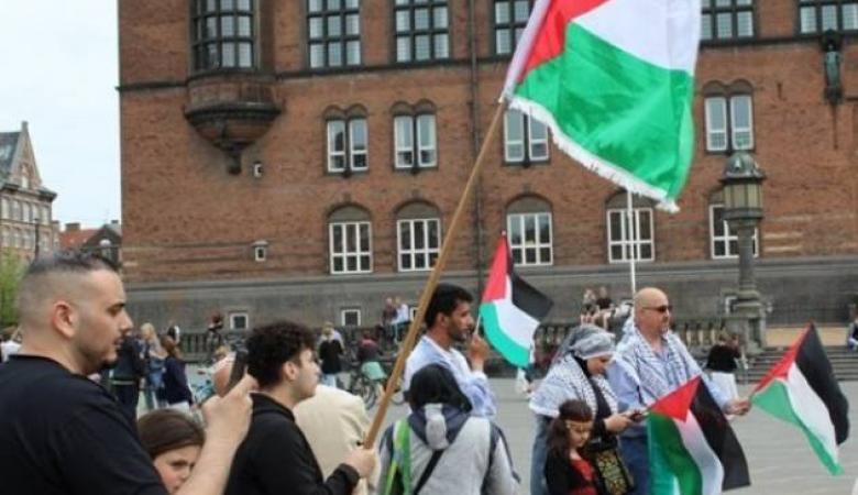 جاليتنا في الدنمارك تنظم وقفة تضامنية مع لبنان