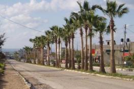 اسرائيل تصادر 29 دونما زراعيا على طريق جنين -الناصرة