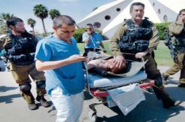 بسبب لسعة نحلة.. جندي بالجيش النظامي الإسرائيلي في غرفة الإنعاش!