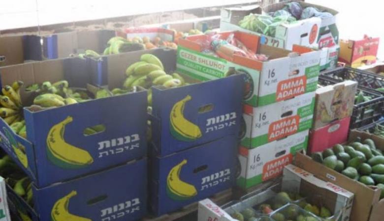 (محدث) الاحتلال يمنع تصدير المنتجات الزراعية الفلسطينية عبر الأردن