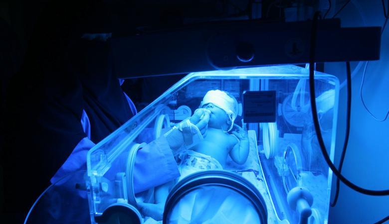 3492 مولودا جديداً خلال الشهر الماضي في الضفة الغربية