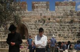 """مستوطنون وعناصر مخابرات يقتحمون الاقصى وصلوات تلمودية في """"باب الرحمة"""""""
