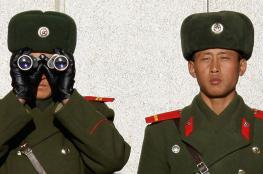 """كوريا الشمالية تفرض على كل جندي تربية """" 15 ارنب """""""