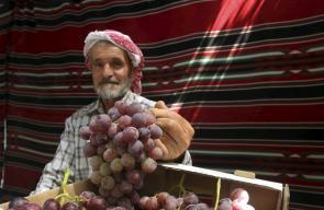جانب من  مهرجان العنب في الخليل