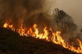 حرائق لبنان تؤدي لخسائر لن تعوضها الأموال