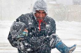 لاجئون سوريون يجدون موطنا في ايسلندا القطبية