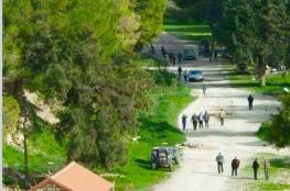 150 مستوطناً يقتحمون منطقة أثرية في برقة شمال نابلس
