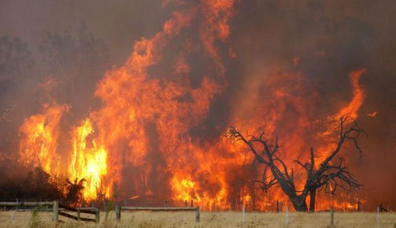 الدفاع المدني يوجه رسالة هامة للمواطنين بشأن الحرائق