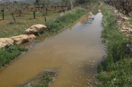 مستوطنون يغرقون أراضي زراعية جنوب نابلس بالمياه العادمة
