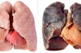 خضار ينظف الرئتين من التدخين بأسرع وقت