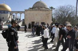 العشرات من المستوطنين يقتحمون المسجد الأقصى