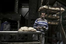 """بالفيديو: """"مصري"""" من بائع ساندوتشات إلى محلل أخبار"""