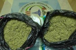 ضبط  2كيلو من  الماريجوانا المخدرة في الخليل
