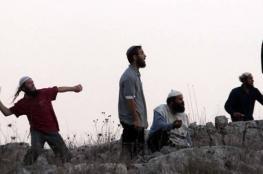 إصابة مواطن في اعتداء للمستوطنين جنوب الخليل