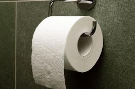 نستعمل المناديل الورقية للحمامات اليوم.. ولكن ماذا كانت الشعوب القديمة تستخدم بدلاً منها؟