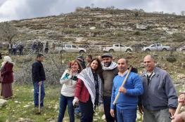 زراعة 2200 شجرة في سنجل شمال شرق رام الله