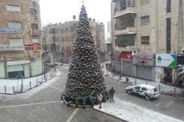 الشتاء في فلسطين يقترب من النهاية