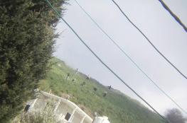 مستوطنون يهاجمون عصيرة القبلية بنابلس