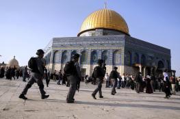 الاردن تندد بالانتهاكات الاسرائيلية في الاقصى