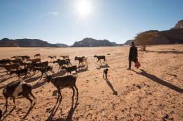 مدينة اردنية سجلت يوم أمس أعلى درجة حرارة في العالم