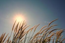 حالة الطقس : انخفاض ملموس على درجات الحرارة