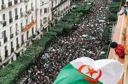 """الجزائر تشهد أضخم موجة تظاهرات ضد الرئيس """"بوتفليقة """""""