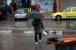 تقرير : نابلس الأكثر امطاراً  في الضفة الغربية وقطاع غزة