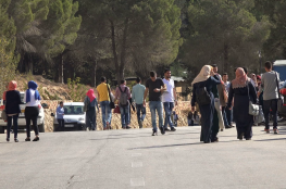 أعلى 5 تخصصات ذات بطالة متفشية في فلسطين