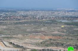 الاحتلال يصادر عشرات الدونمات من اراضي قلقيلية